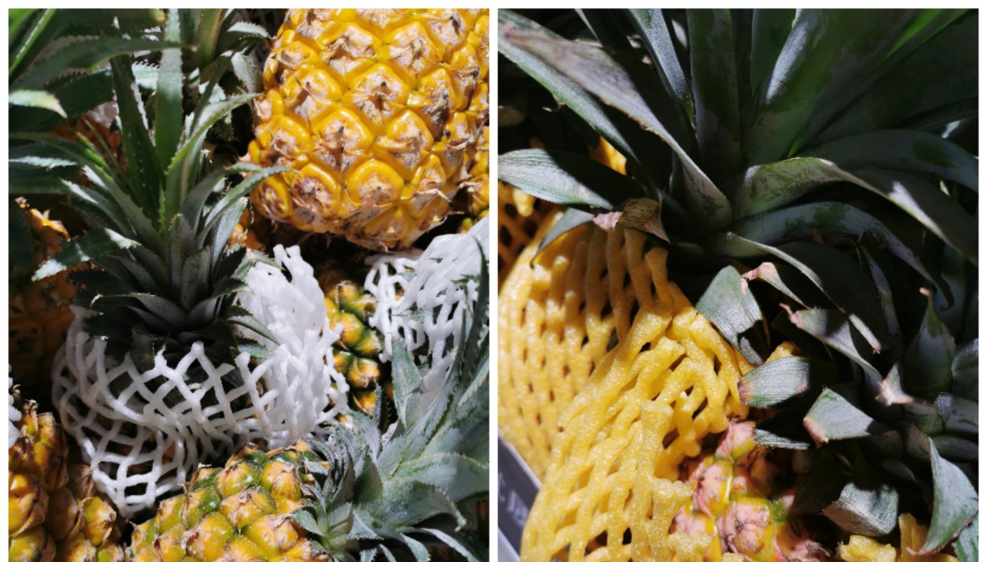 凤梨和菠萝是一样的吗?学会区分它们,只需简单一招!
