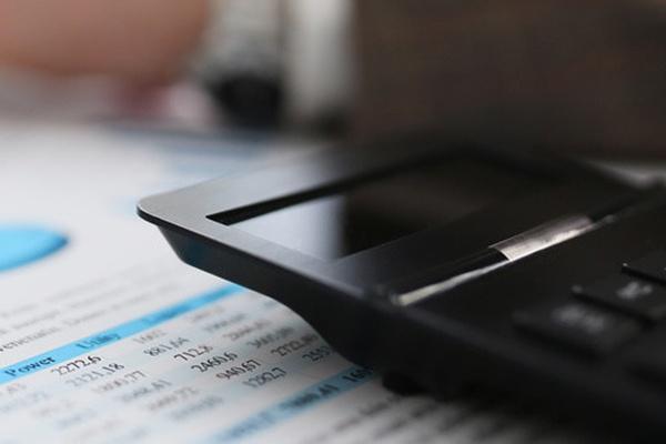 报喜鸟控股股份有限公司关于非公开发行股票申请获得中国证监会受理的公告
