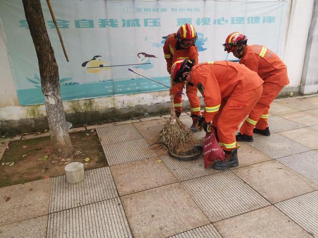 菜花蛇爬上大树吐信吓人 消防员徒手除险