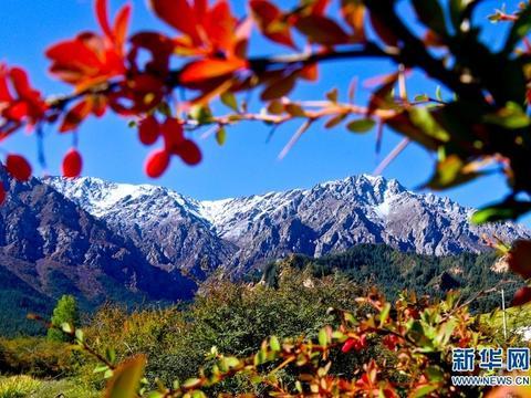 祁连山之秋就是这么好看