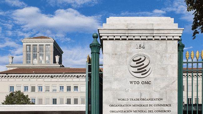 """关于""""新冠知识产权""""问题,世贸组织迈出了第一步"""