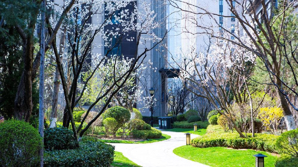 东北龙湖2021善居计划 让社区自带美颜滤镜