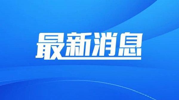 关于深圳机场码头、蛇口邮轮中心相关航线临时停航通知