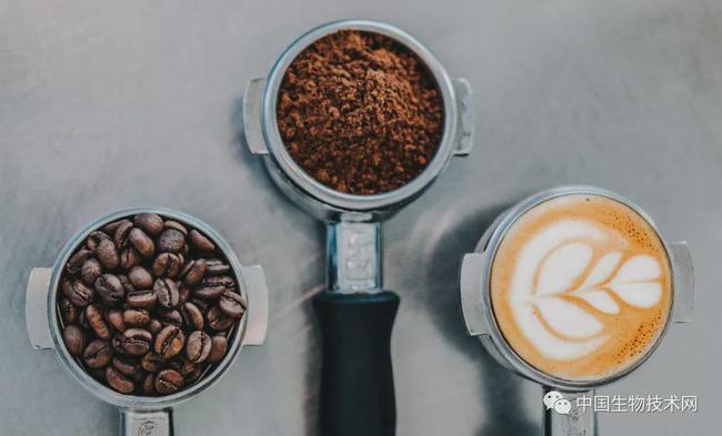 最新研究:所有类型的咖啡均可以降低慢性肝病的风险!