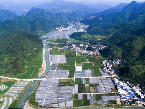 """江口:""""4个1+1""""助力村级集体经济高质量发展"""