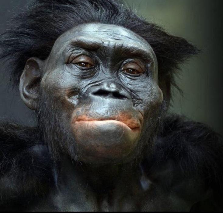 """人类起源于""""夏娃""""?难道圣经故事是真的?"""