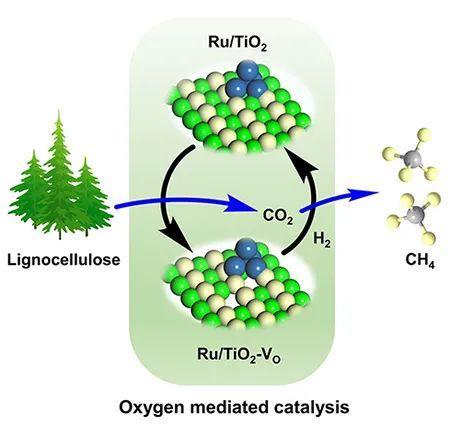 科学家提出载体氧缺陷介导的生物质直接甲烷化新方法