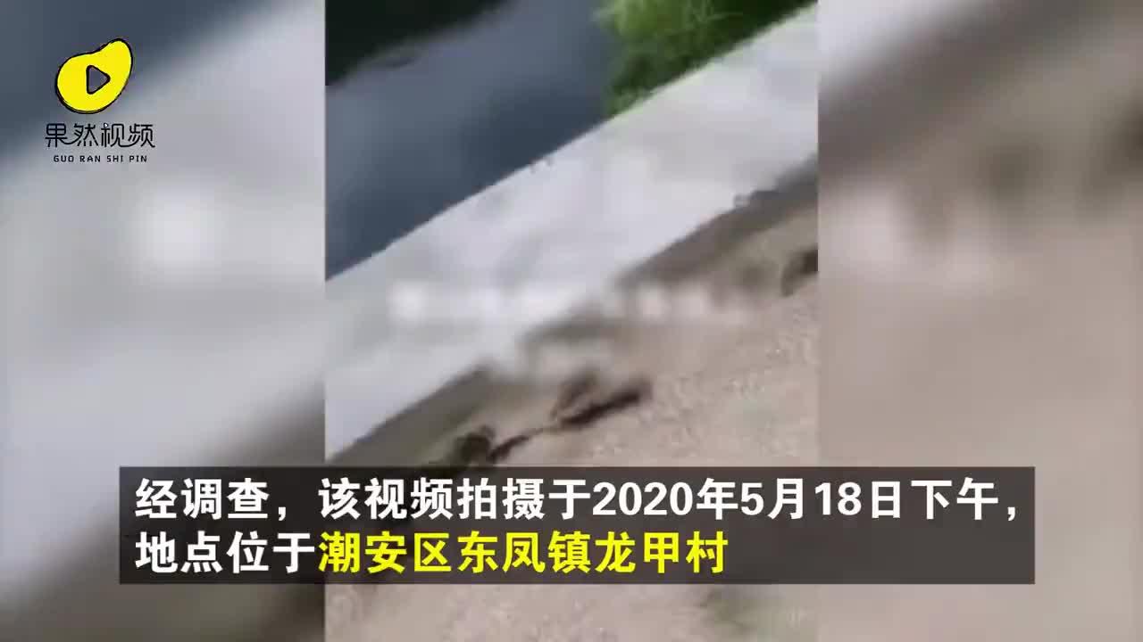 月 20 地震 5 日