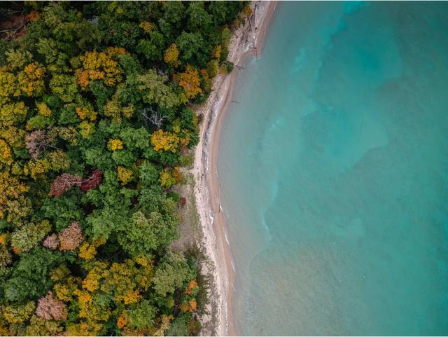 """蚌埠市创新建立""""五长五联""""协作机制聚力保护林业生态资源"""