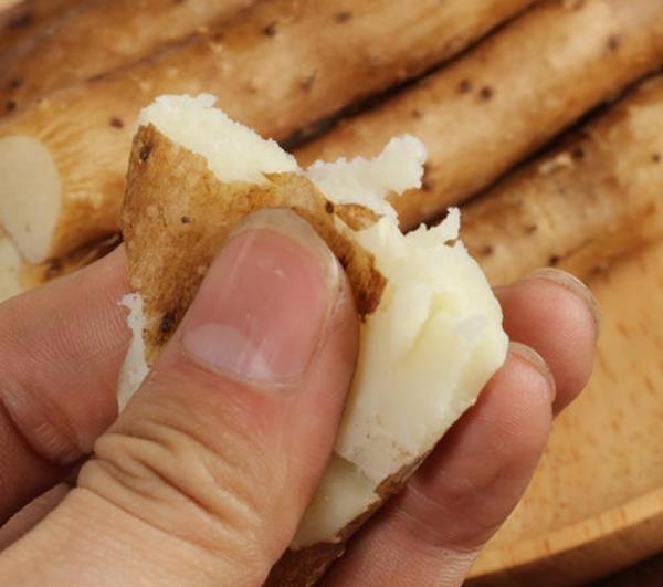 很多人对山药表皮的黏液过敏,日本人却生吃山药泥,嘴巴不痒吗?