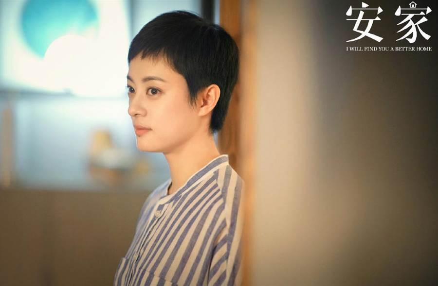 《安家》房似锦遇有爱老夫妇,曲玲珑看上徐文昌