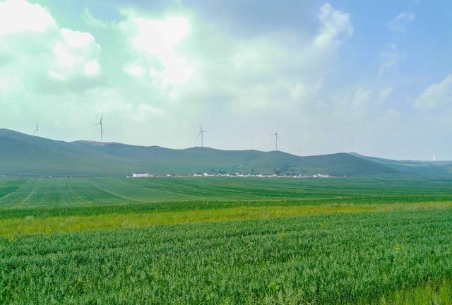 春天超美的地方,一望无际都是碧绿,藏着一个很出名的村子