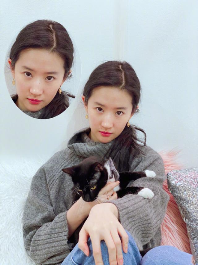 刘亦菲晒与猫狗合影爱心爆棚,纯素颜出镜脸上痘印可见,颜值耐打