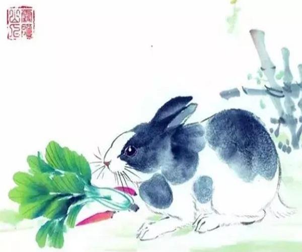 4月下旬下下籤,屬兔人要特別留意4月,可能家中