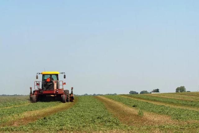 國家發文!農用地審批權下放,農業迎來哪些利好?