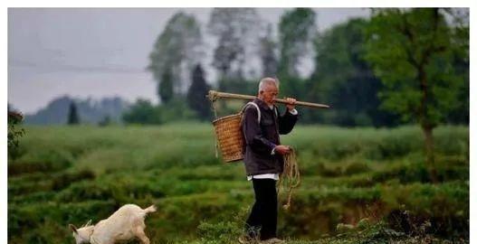 山东农村的数百年未有之变!合村并居,村子即将消失……