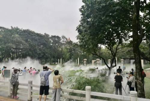 禅城区亚艺公园禅荷花岛终于开放喷雾,简直是太美啦