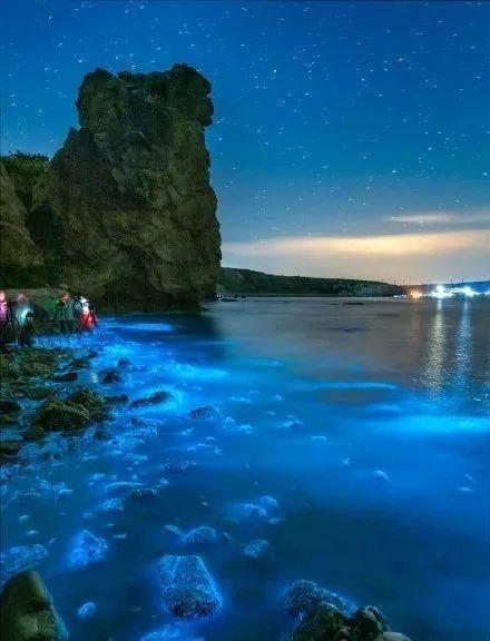 大连出现梦幻荧光海,带你揭开荧光小秘密