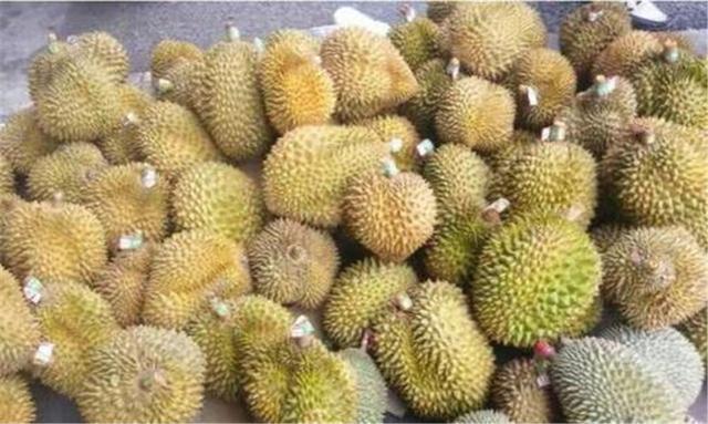 泰国太给力了,卖不合格水果给中国判刑3年,越南果农坐不住了