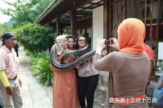 把蟒蛇当宠物,还是得小心,不然可能会出事!