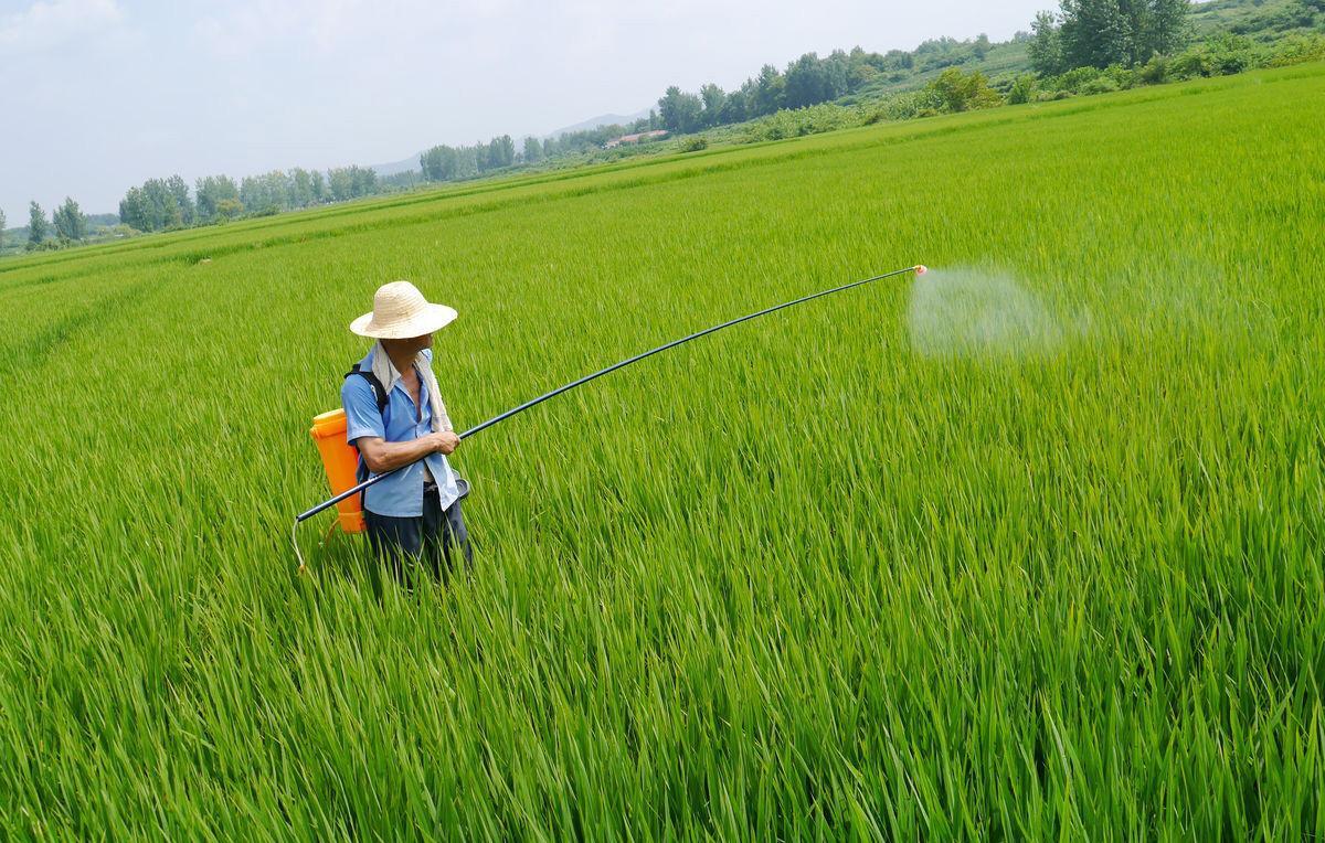 《【万和城代理平台】农药博士勇夺精选层第一股!家族财富达23亿,公司业绩下降36%》