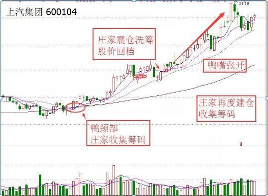 《【万和城品牌】终于有人说了不敢说的话:中国股市重返牛市先把这五个问题解决好》