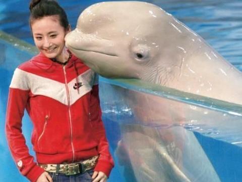 她曾是国家跳水队一员,16岁一战成名,如今在娱乐圈发展不顺利