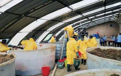 警方查扣的制毒材料麻黄碱等物品。警方供图