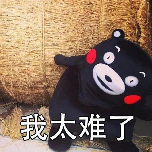 """日媒:在这一领域,日本 """"不选择中国"""""""