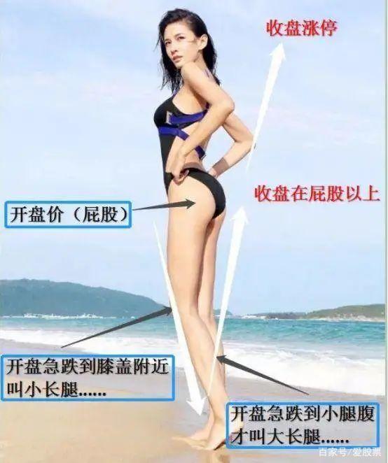 《【万和城网上平台】有量有分歧,8月就有御龙阁最擅长的大长腿!》
