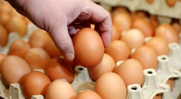 """《【无极2平台app登录】鸡蛋刚上涨两周就""""跳水"""",为啥?储备肉即将放出,猪肉要降价?》"""