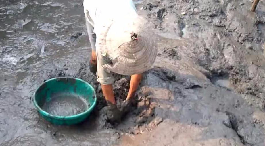 村里的池塘被抽干,男子晚去没见鱼虾,挖到此等宝贝