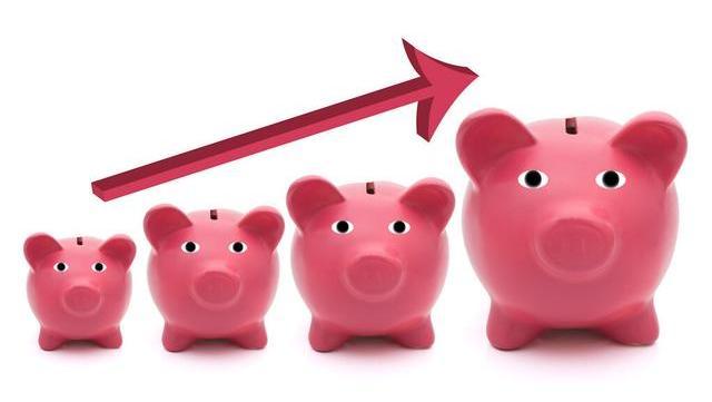 跌势不见底 9月25日猪肉价格多少钱一斤