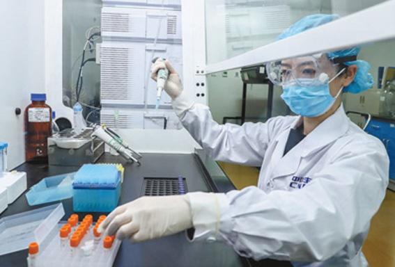 在北京国药集团中国生物新冠疫苗生产基地,工作人员对新型冠状病毒灭活疫苗样品进行纯度检测 新华社图