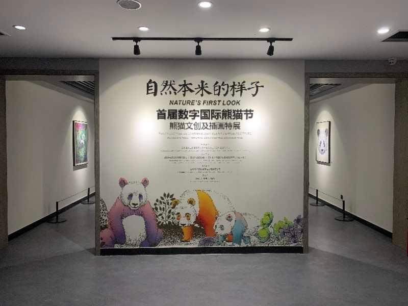 来熊猫基地看许燎源最新作品 大熊猫文创插画特展今日启幕