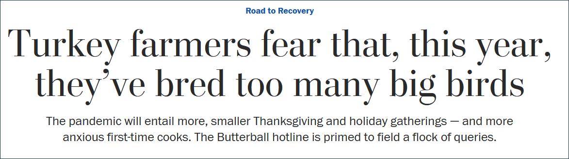 """《华盛顿邮报》:火鸡农户忧忧郁,今年他们养了太多""""大鸟"""""""
