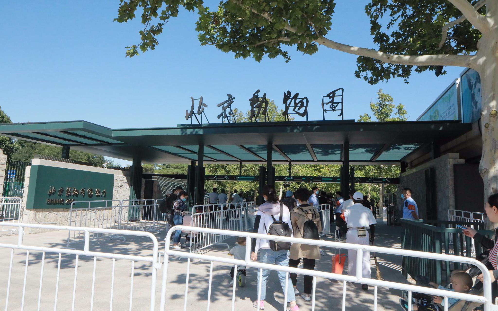北京动物园启用新大门设12条验票通道 古建百年老门将作备用