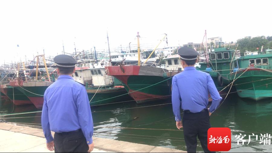 市海洋与渔业行政执法大队和市综合行政执法局的执法人员对驶离渔港内的船只展开侦察检查,确认渔船回港避风情况。记者 苏桂除 摄