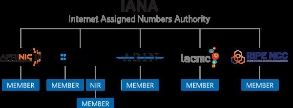 互联网号码分配机构