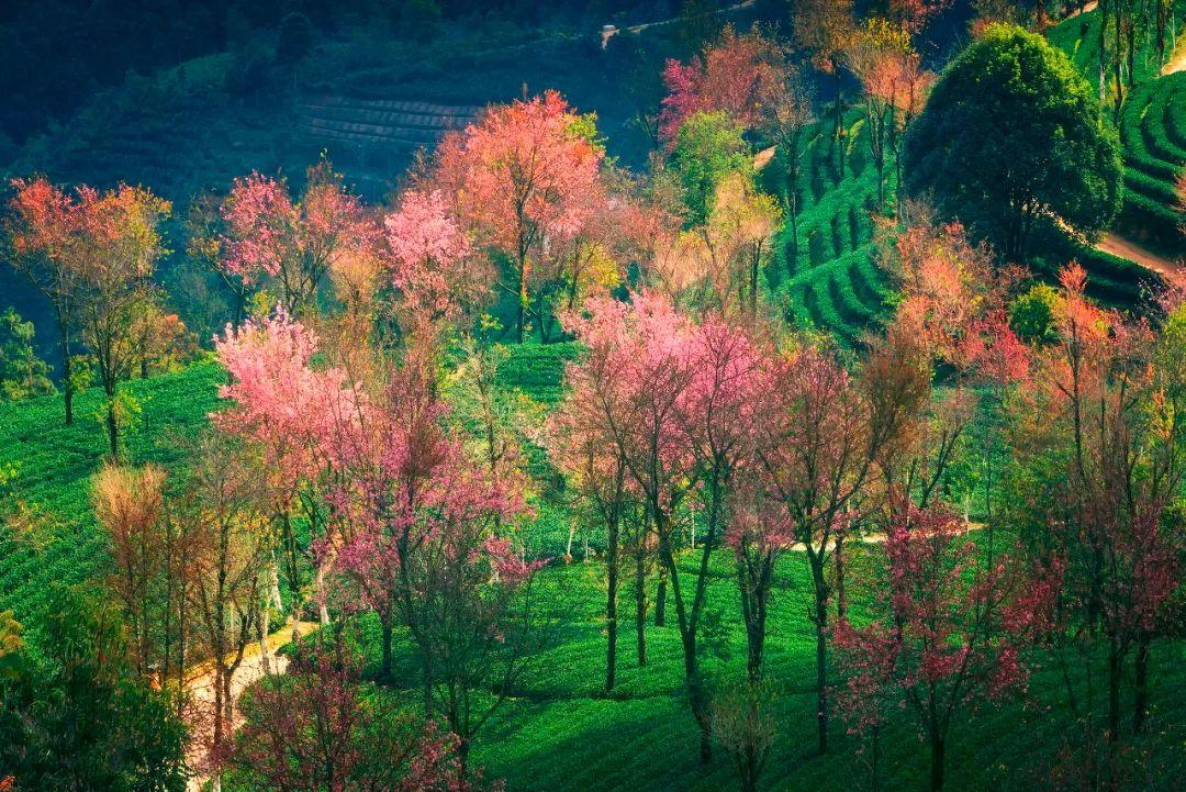 12月最适合旅行的地方 有些美丽只有冬天才有