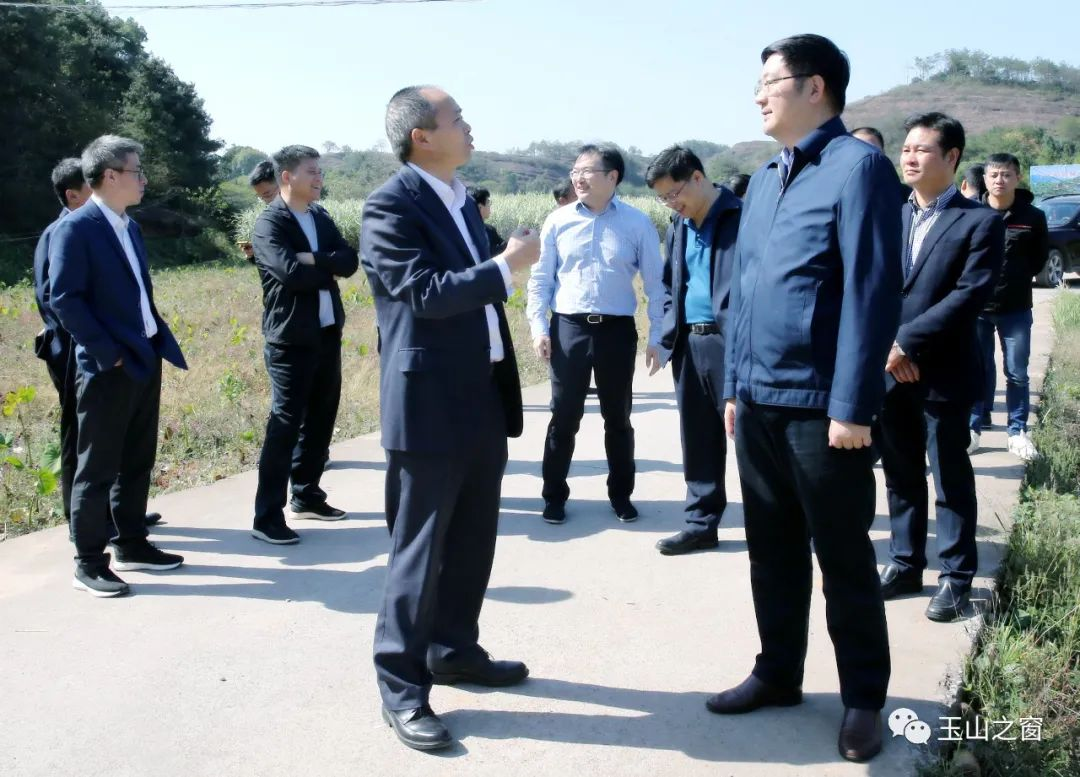 玉山将增加一个高速出口,省高速集团调研组就此来玉山调研 胡剑飞、徐树斌陪同