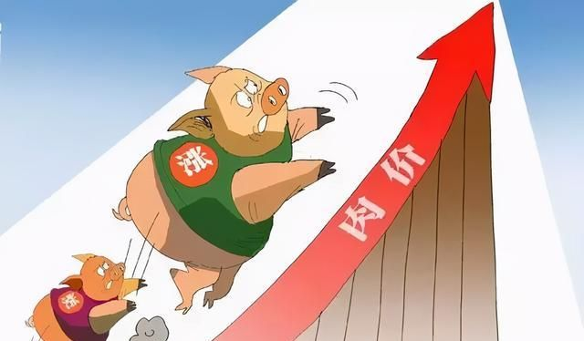 """《【无极2娱乐登录平台】12月猪价连续""""4连暴涨""""?春节吃猪肉有压力吗?附:5日猪价》"""
