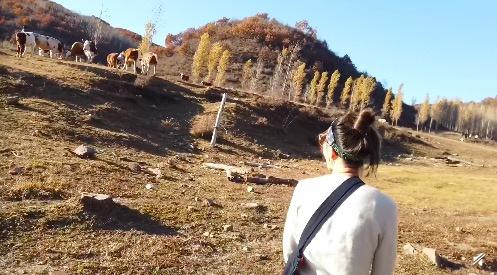 阿朵生活中喜欢走进大自然。图来自阿朵vlog截图