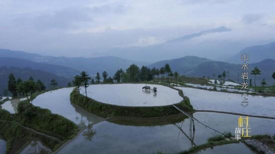 王永利:大型纪录片《村庄故事》小康路上中国农村真实样貌的国家相册