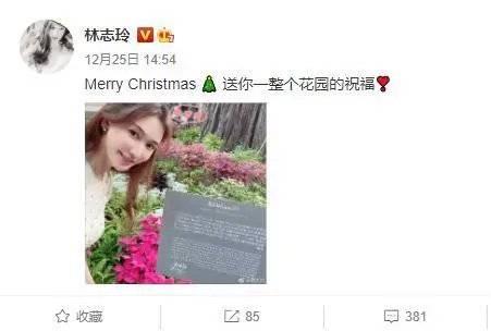 林志玲重游婚礼举办地,幸福甜笑女神依旧,透露在积极备孕中