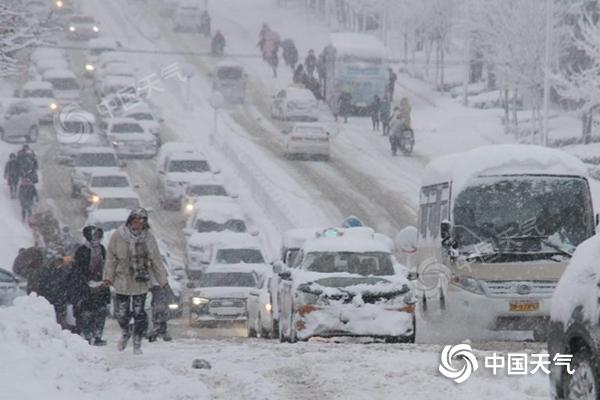 山东威海文登区昨日大雪纷飞。(图/宋永强)