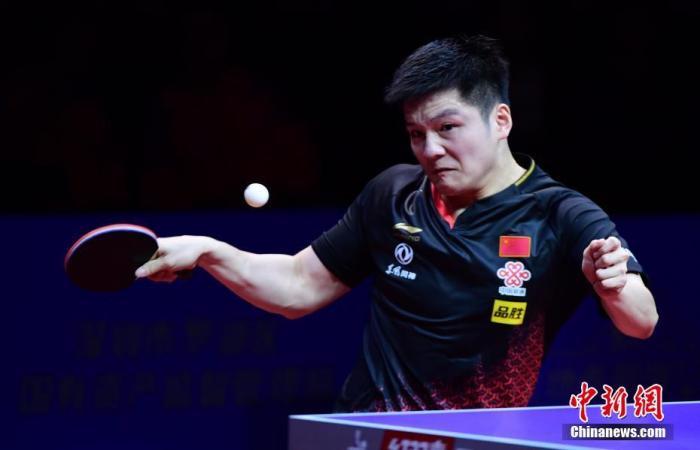 原料图:樊振东在比赛中。中新社记者 陈文 摄