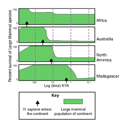 人类到达各地的时间和该时间对各地物种数量的影响