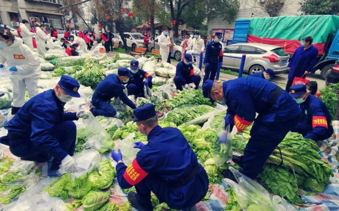青山区消防员在协助分拣蔬菜。受访者供图