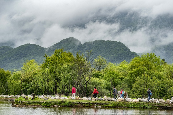 神农架国家公园大九湖。新华社 资料图